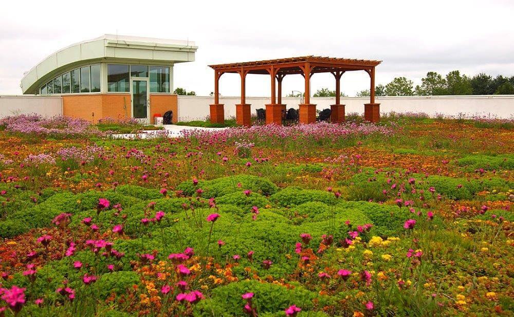Проектирование экологически чистых строений