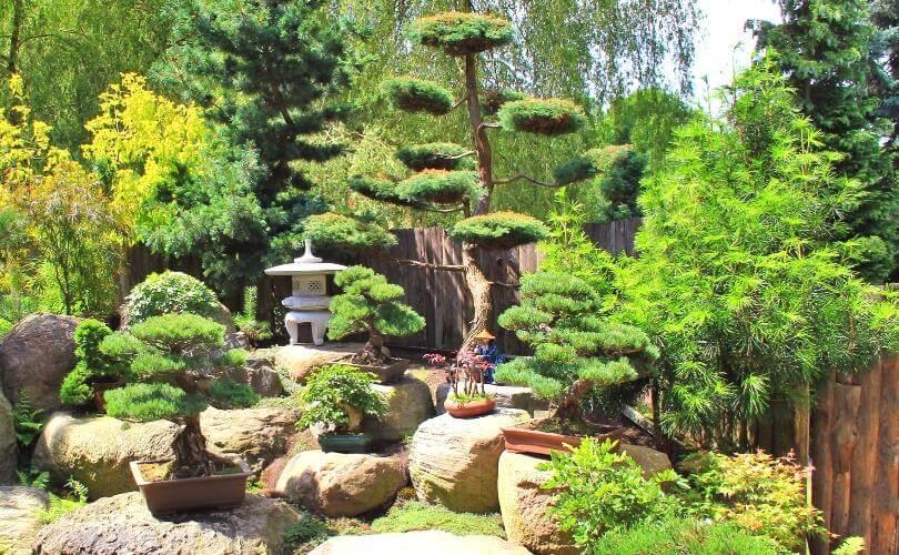 Ландшафтные компоненты сада